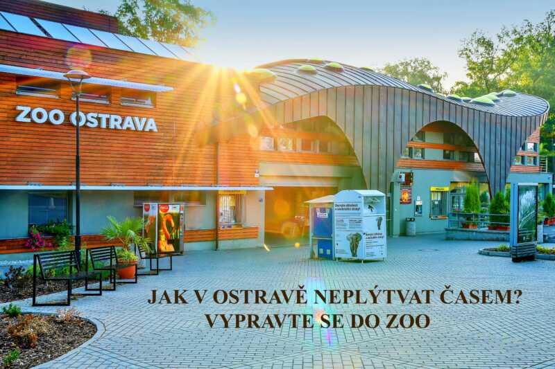 Za zvířátky velkými i malými do ZOO Ostrava